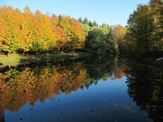 Studios Vacances Marchant de Bonne Heure : Parco e lago fanno parte della proprietà