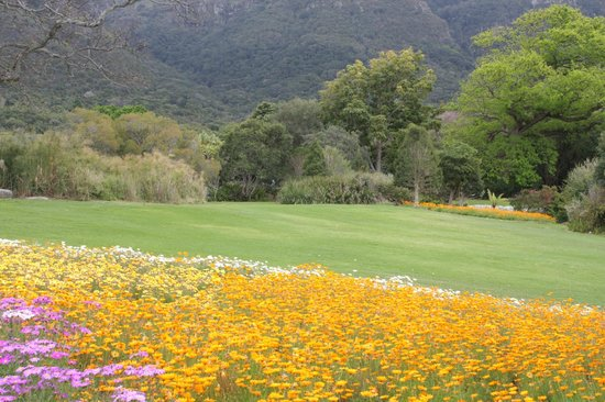 Photography Tours: Kistenbosch Gardens