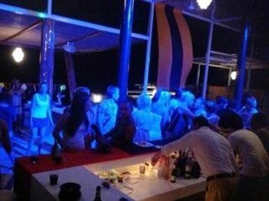 Gecko Bar Hill : Gecko pool party