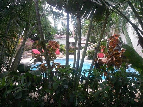 Granada Inn: view from dining area window room 1(Casa Del Mar pool)