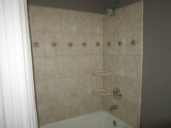 Beautiful Tiled Shower Tub Area