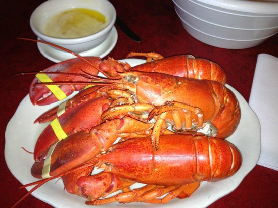 Gorham, ME: Triple Lobster Dinner Special