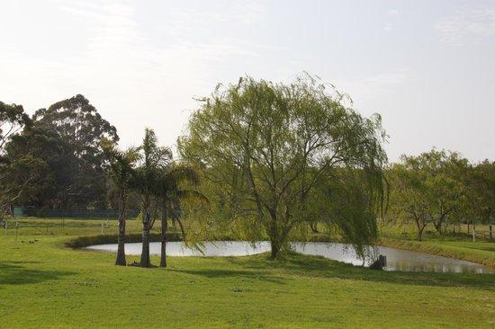 Rayanne Homestead : Farm View