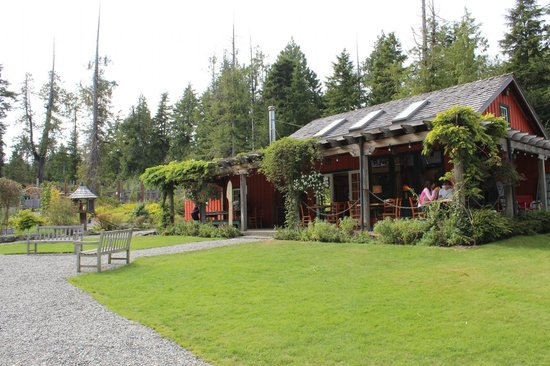 The Ecolodge at the Tofino Botanical Gardens: Darwin's Cafe