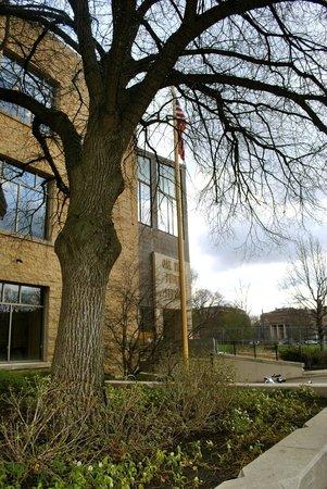 Oak Park Public Library