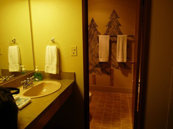 Stoneridge Resort: Bathroom was adequate for two