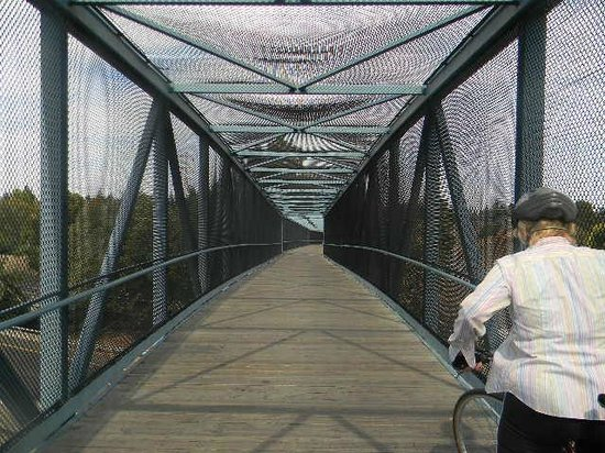 Stevens Creek Trail: central expressway bridge