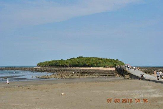 Aoshima Island: Island of Aoshima