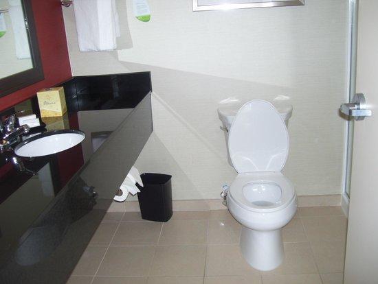 Courtyard Charlotte Airport/Billy Graham Parkway : bathroom