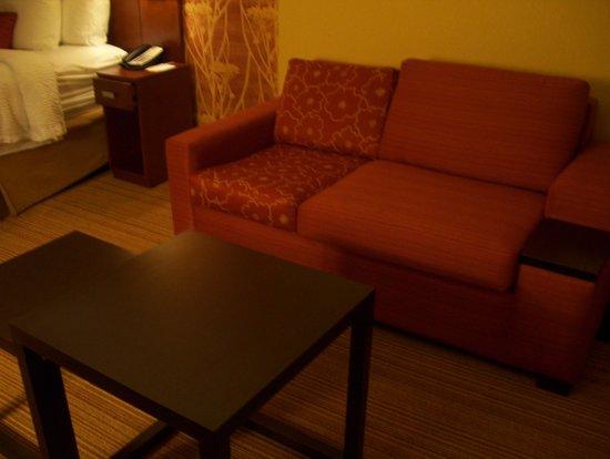 Courtyard Charlotte Airport/Billy Graham Parkway : sofa