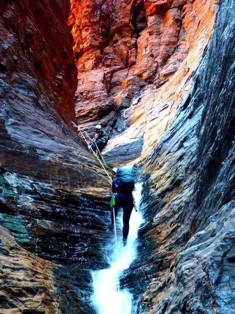 West Oz Active Adventure - Day Tours: Climbing up Hancock Gorge