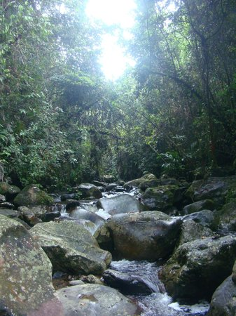 Lupa Masa Rainforest Camp: The river by LM