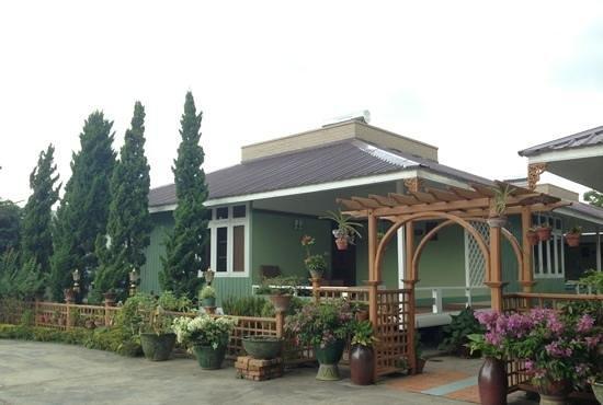 Paradise Hotel : bungalow