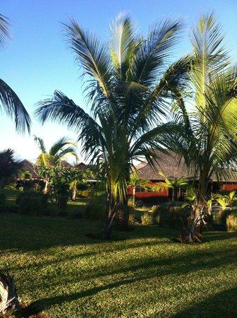 Palm Hotel & Spa : Vue depuis la suite