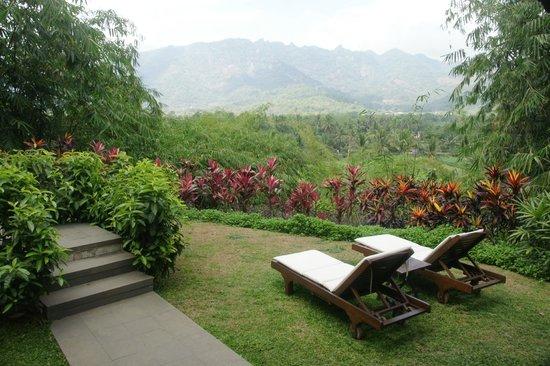 Plataran Borobudur Resort & Spa: The wondelfull view from our villa
