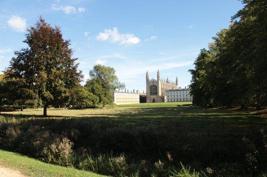 Cambridge Bike Tours: 3