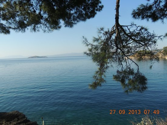 Hotel Punta : vista  sul mare