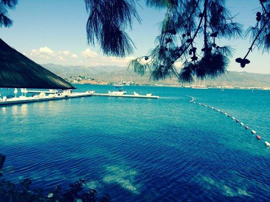 Alesta Yacht Hotel : The private beach