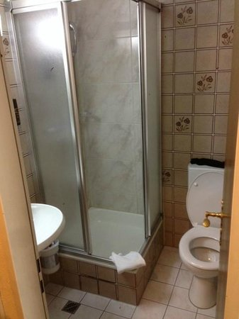 Best Western Ambassador Hotel: shower