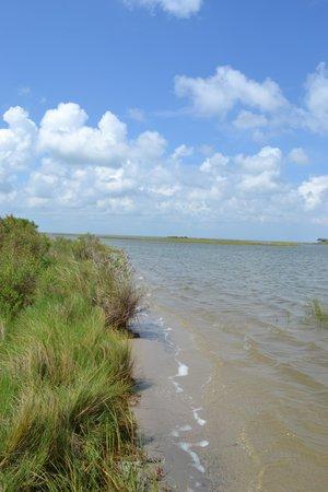 Galveston Island State Park Bay