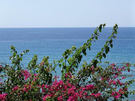 Horizon Beach Hotel: Meerblick vom Balkon!