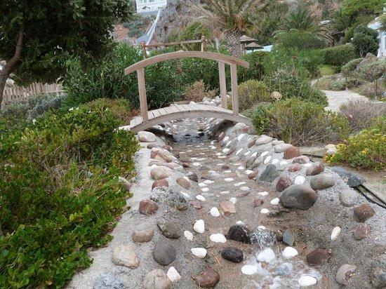 Kalypso Cretan Village : aménagements au bord d'une piscine