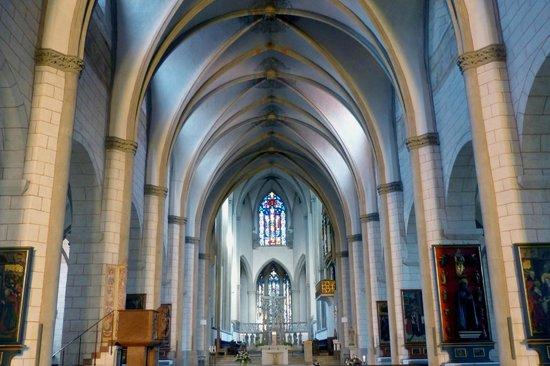 Dom St. Maria: navata