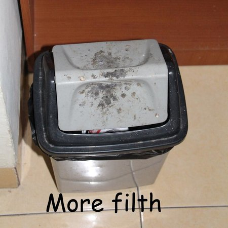 Merbabu Hotel: Generally, the room was very filthy