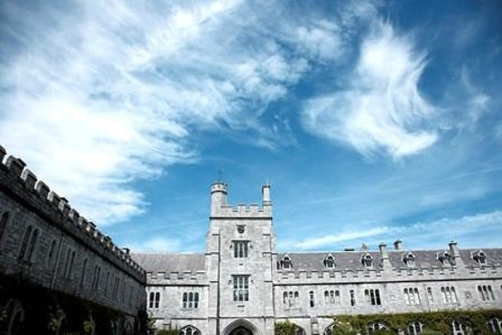 Provided by: University College Cork (UCC)