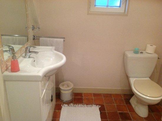 Maison D'hotes Lagatine : Washbasin & Toilet