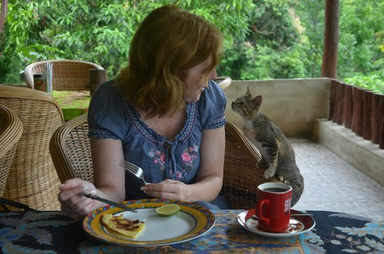 Bambu River Guesthouse Tangkahan: Breakfast