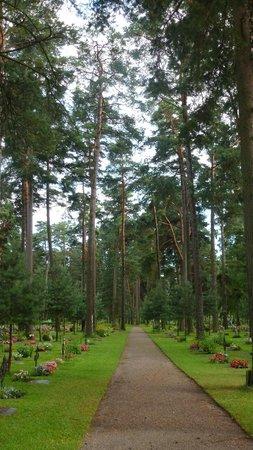 Skogskyrkogarden: Skogskyrkegården