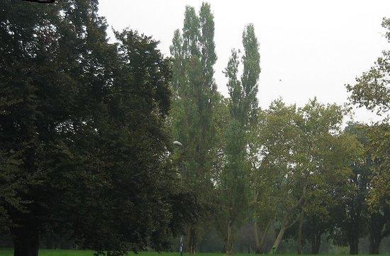 Parco Lambro