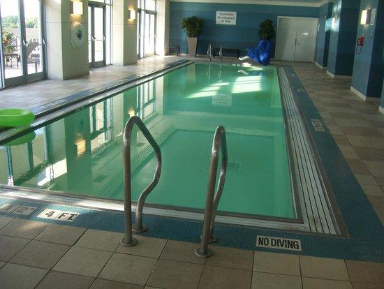 Westin Charlotte: pool