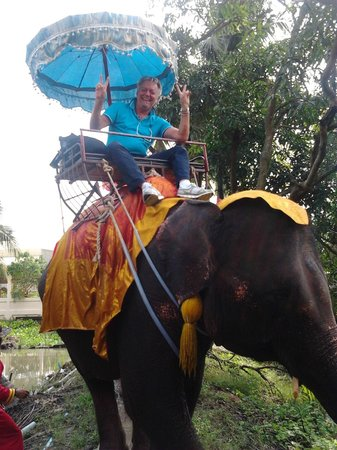 Bandara Suites Silom, Bangkok : Elefant Tour a 70 Km dall'Hotel