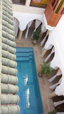 Riad Berenssi : piscine vue du toit terrasse