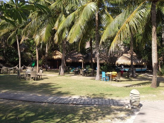Hai Tide Beach Resort: the Garden