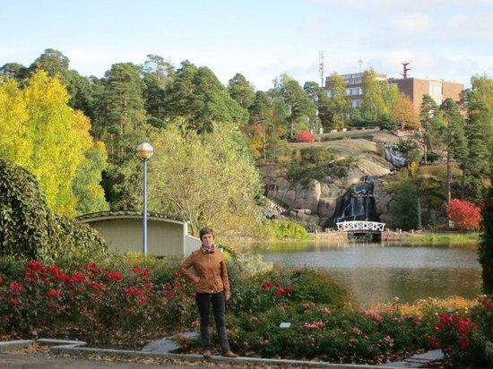 Sapokka Water Garden: вид на водопад в парке Сапокка