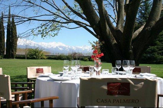 Casa Palmero Wine House