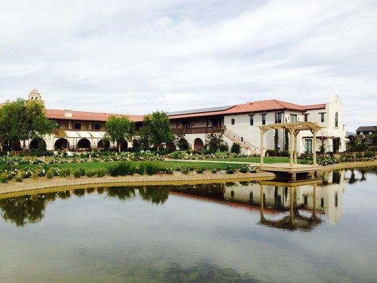 Ponte Vineyard Inn: From the vineyard