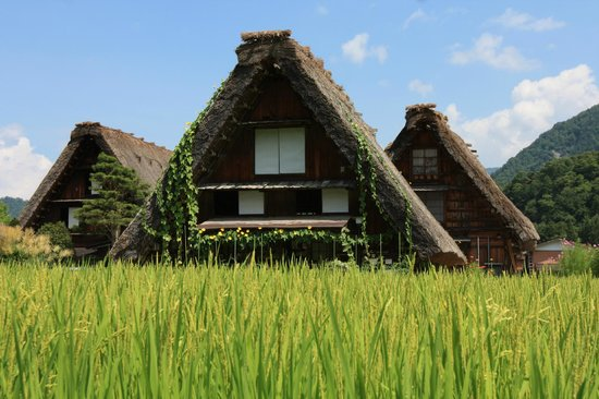 Дом - Picture of Shirakawago Gassho Zukuri Minkaen, Shirakawa-mura - TripAdvisor