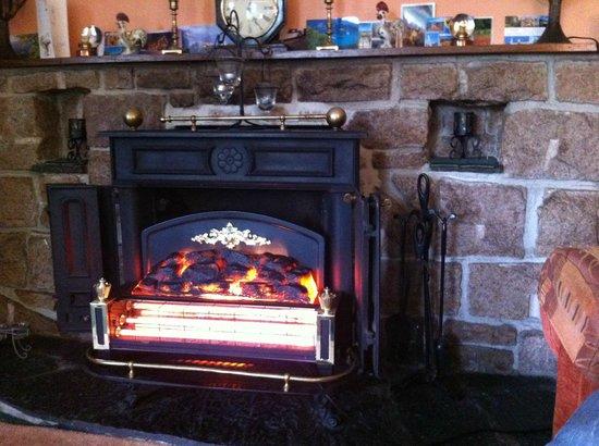 """Pine Grove Bed & Breakfast: Le """"faux"""" feu de cheminée dans le salon qui réchauffe bien toutefois!"""