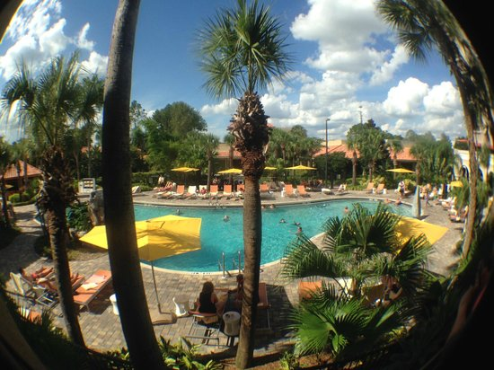 Doubletree by Hilton Orlando at SeaWorld: The view as I walk out from the room