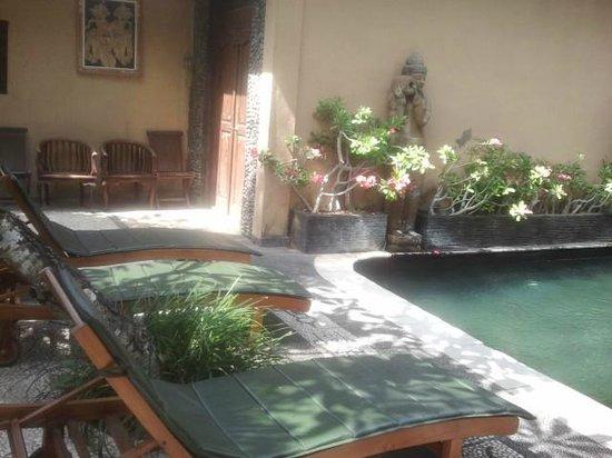 Alam Bali Resorts: Nice surroundings