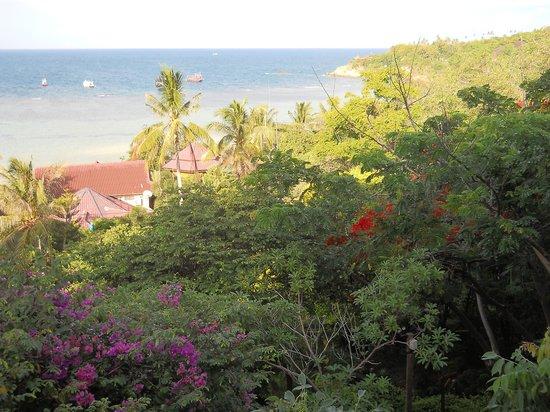 Ko Tao Resort: vista camera
