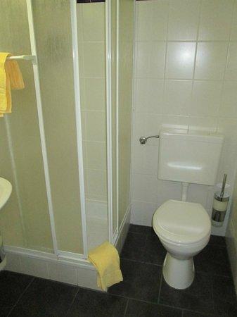 Center Hotel Zwickau Mosel: Dusche und WC