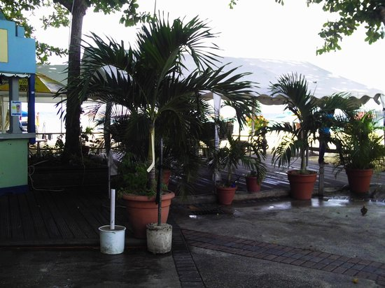 Johnny Cool Jazz & Blues Beach Bar: very relaxing atmosphere