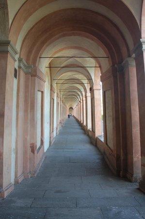 Santuario di Madonna di San Luca: Going up