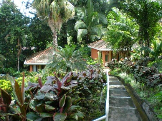 Hotel Villa Teca: Habitaciones por fuera