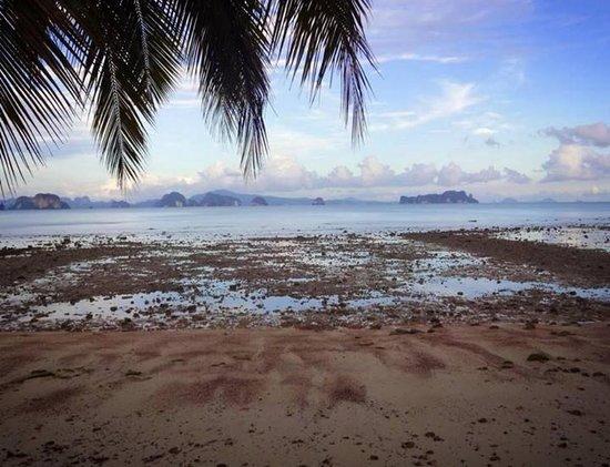 Holiday Resort Koh Yao Noi: เวลาน้ำลดช่วงเย็น หน้าฮอลิเดย์ รีสอร์ท